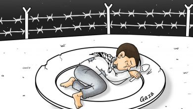 Photo of فلسطين ليست ولن تبقى وحيدة